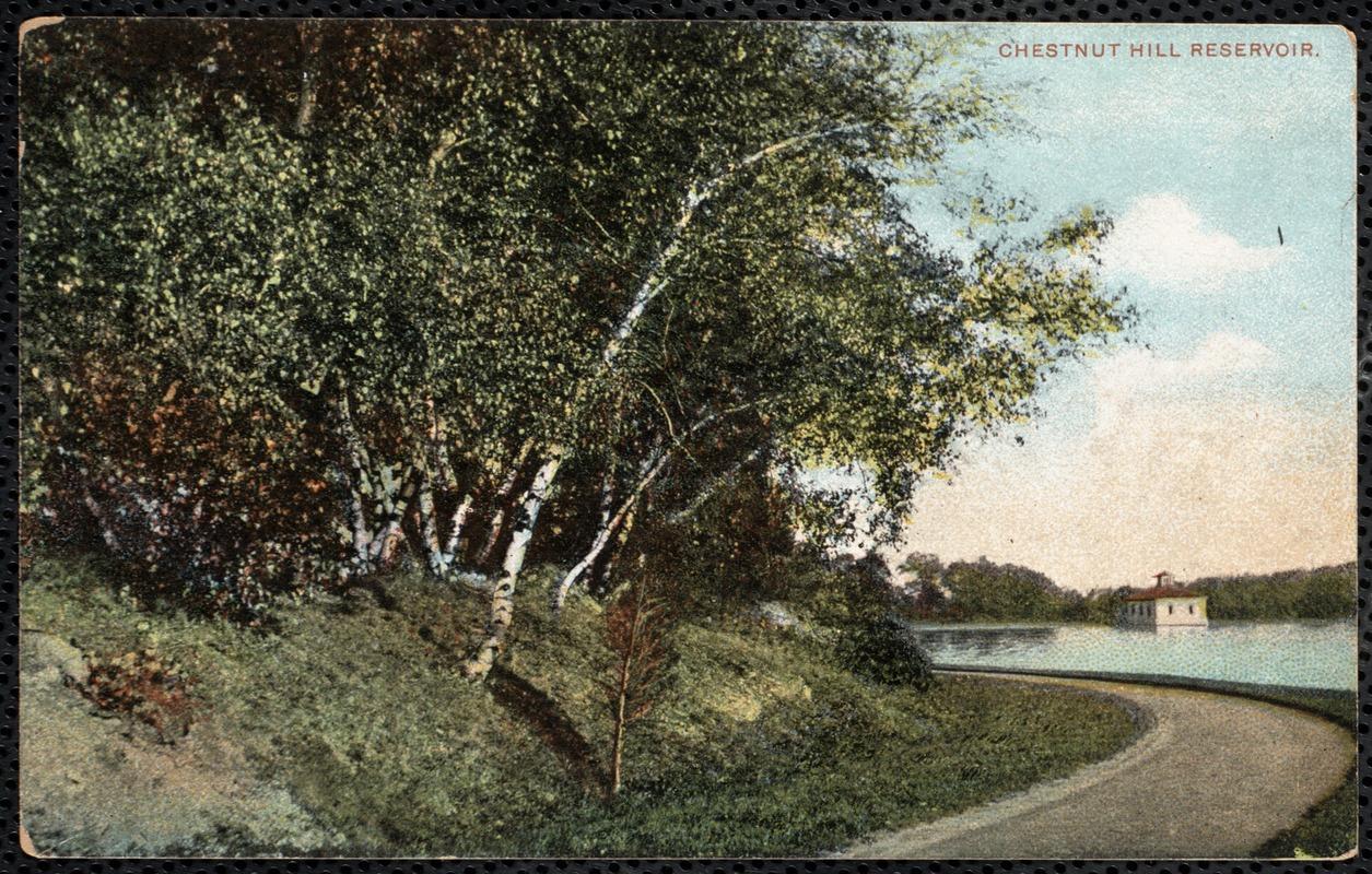 Br36 chestnut hill reservoir