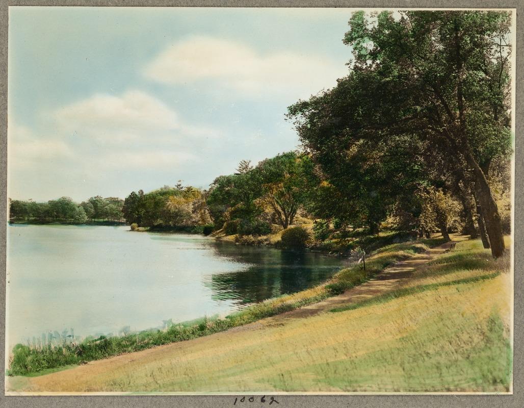 Br49 jamaica pond